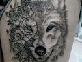 wolflowerReaSITE